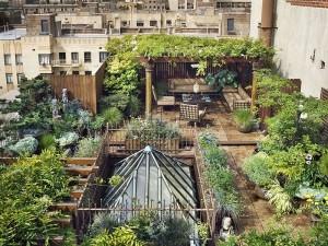 çatı bahçesi